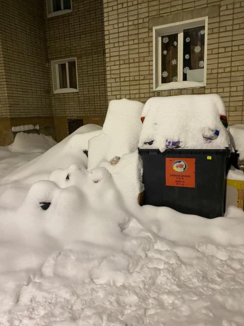 Фото В Кирове кучи невывезенного мусора завалило снегом
