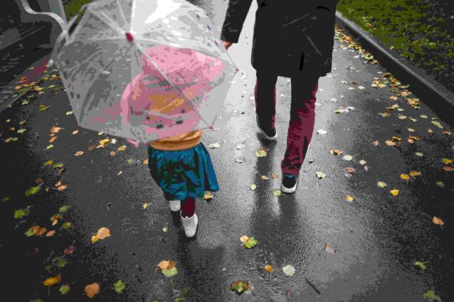 Фото В Коми ожидается холодная и дождливая рабочая неделя