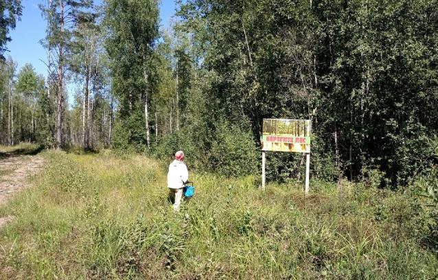Фото В 13 районах Кировской области создают охотничьи заказники