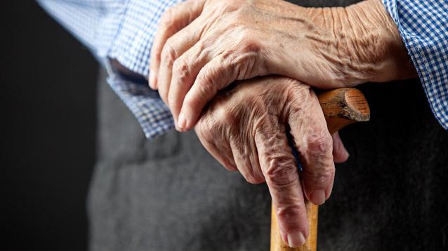 Фото В Сыктывкаре пенсионеры смогут бесплатно проехать на автобусе