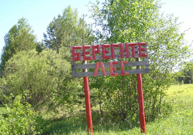 Фото Жителям Кировской области запретили посещать леса и разводить костры