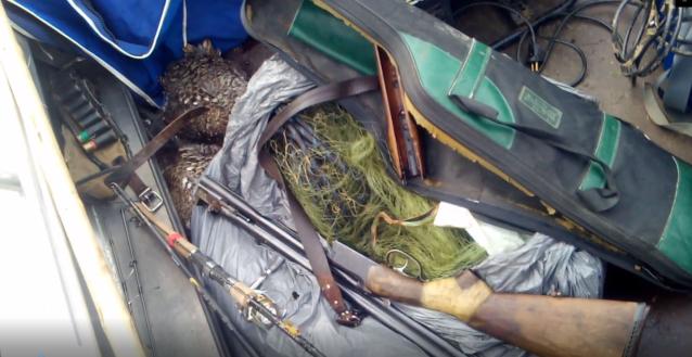 Фото В Коми в заказнике «Вымский» поймали браконьеров, убивших двух глухарок