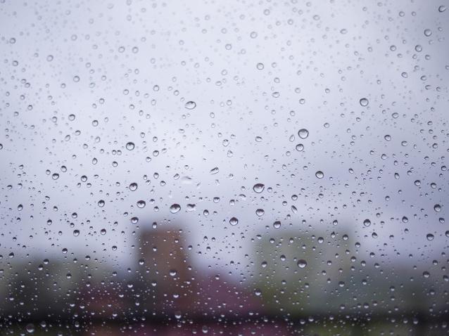 Фото В Кировской области на выходных ожидается дождь и до +12