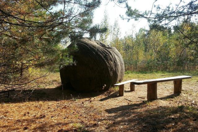 Фото Министра охраны окружающей среды Кировской области попросили спасти жуковлянские валуны