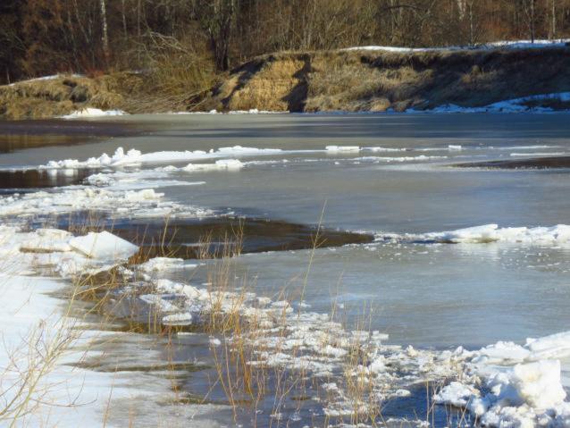 Фото В Кировской области за сутки уровень воды в реках поднялся от 1 до 12 см