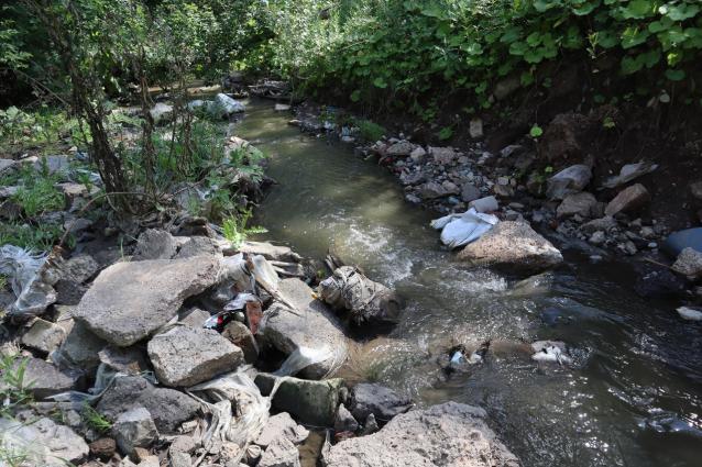 Фото В Кирове предприятие сливало неочищенные стоки в реку Хлыновку