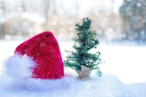 Фото Новогодний тест! Что ты знаешь о Дедах Морозах из разных стран мира?