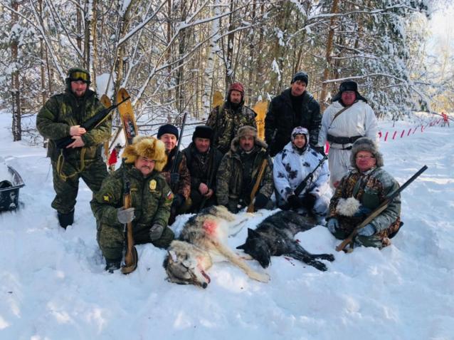 Фото В Кировской области добыли ещё одного черного волка