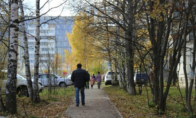 Фото На погоду в Коми во время рабочей недели будет влиять обширный антициклон