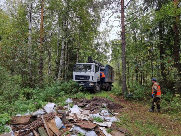 Фото В Коми «мусорный» регоператор убрал из леса 40 кубов отходов