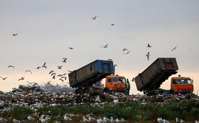 Фото Областному центру грозит «мусорный коллапс»?