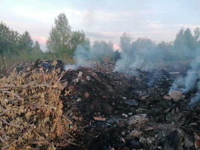 Фото Жители Котельнича задыхаются от дыма горящей свалки