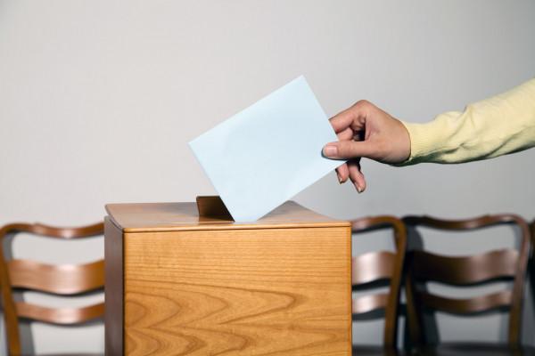 Фото Сыктывкарцы рассказали, пойдут ли они голосовать