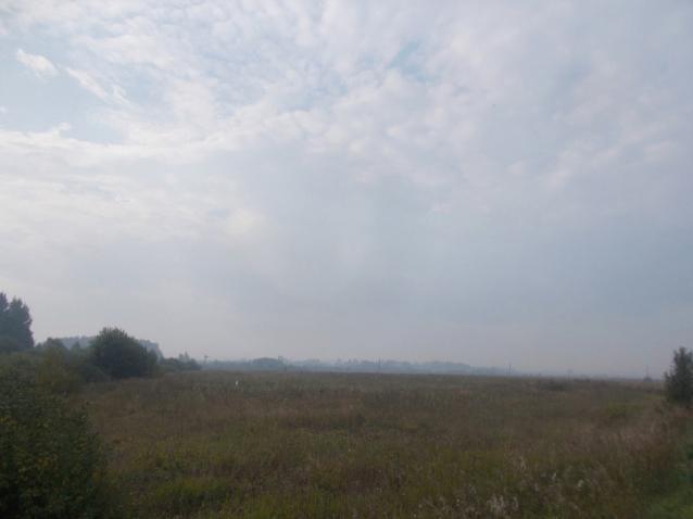 Фото Кировскую область настиг дым от пожара в Марий Эл